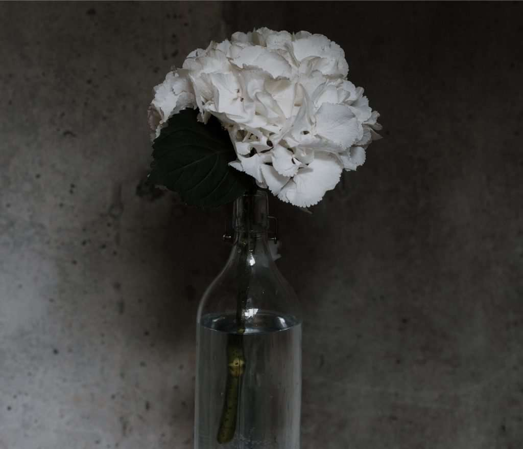 This not Time in a Bottle, but a flower in a bottle.