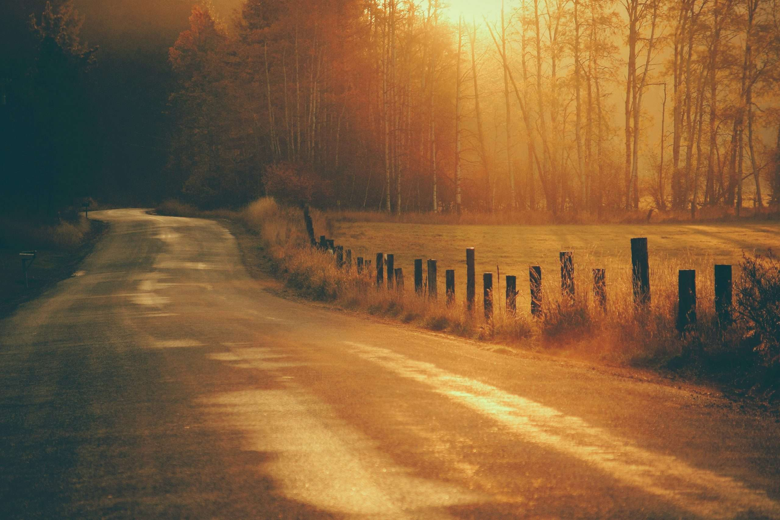 Photo of a country road scene